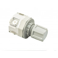 CKD R4000-15G Air regulator 1/2 BSP